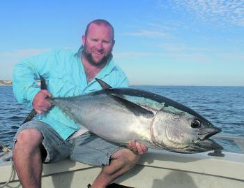 Big inshore stickbait-eating bluefin have been a summer highlight this season.