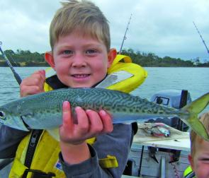Jack Sherriff with a very impressive mackerel from the Tamar River estuary.