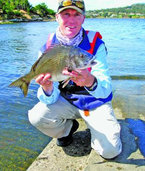 Shore-based bream anglers are finally getting some consistent sport, as bream seem more wide-spread this season.