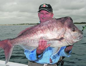 This is the time to get a big snapper. They are not always monsters but there will be plenty to go round this month under the floating dead cuttlefish.