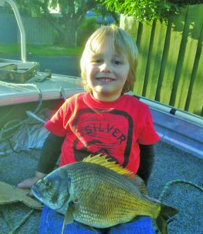 Three-year-old Thomas Devlin with a 42cm Barwon estuary bream.
