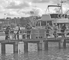 The Post Office Jetty can be a popular and productive fishing platform when the luderick are biting.
