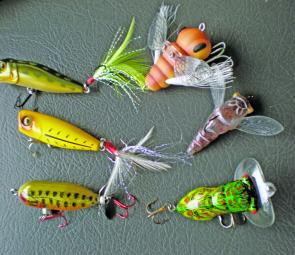A selection of surface lures for November. Clockwise from top left: Megabass Pop-X, Norie Mushimura, River2Sea Jiggly Cicada, Arbogast Hocus Locus, Jackall SK Pop and Heddon Tiny Torpedo.