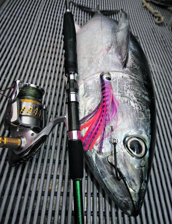 When trolling for gamefish such as tuna, J hooks are the ideal hook to be rigged inside skirted lures.