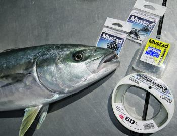Live baiting kingfish is very popular in Victoria nowadays.