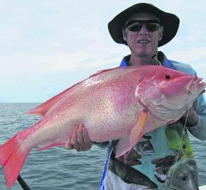 Long time Cooktown local Roger Townsend caught this great saddle tailed sea perch during a break in the weather.