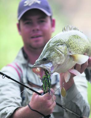 Murray cod season looks like being a cracker.