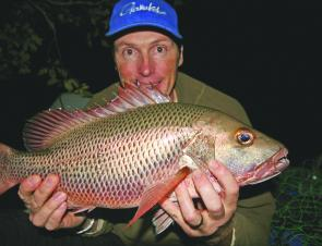 Quality jacks like this 66cm model should be around in good numbers in February,