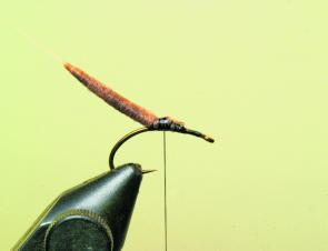Fishing monthly magazines mayflies for dummies for Fly fishing for dummies