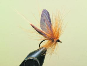 Tie the feathers in and form a small neat head and whip finish, apply a drop of head cement to lock in the head. Lastly take a dubbing brush and gently stroke out the cul-de-cunard fibres that may have been trapped. I usually clip the hackle on the unders