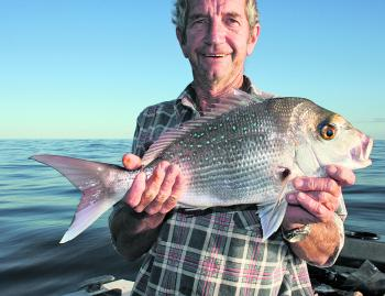 For those keen enough, there's still plenty of snapper about.