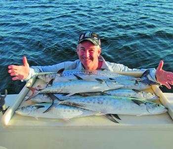 A lovely mixed bag of spotted and school mackerel.
