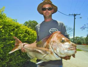 Darren Black with 10 kilos of bay snapper, caught on a lime tiger Gulp Jerkshad.