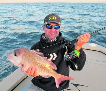 Snapper of this size are a staple for Hervey Bay in autumn.