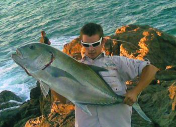 When the trevally schools are thick, big soft plastics worked across the bottom on medium to heavy jigheads will produce the goods.