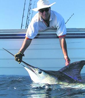 Jeff Debono with a Port Stephens striped marlin from his 6m trailer boat Addiction.