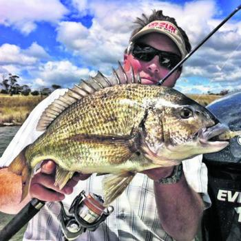 April bream are always good-sized models.