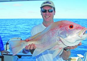 Nannygai like this are regulars on Reefari charters.