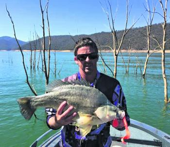 Russell Sanford from Jd/EddyLures with a cracking golden perch.