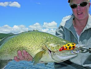 Don't be afraid to use big lures when targeting Murray cod during the last month of the season.