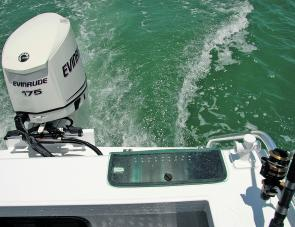 The 175 Evinrude E-tec provided rolled gold assurance that plenty of power was on hand.