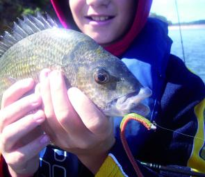 "Jason May caught this bream on a 6"" GULP! camo worm in lake Tyers recently"