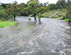 High water levels for the past two or three trout seasons have done wonders for the fishing. Access to the water through boggy paddocks and along washed-out fire trails has been an issue, though.