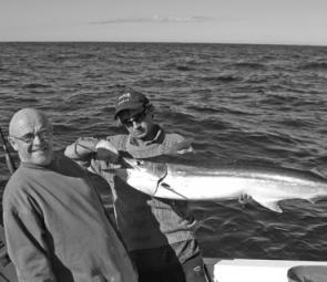 This marlin took a live bait meant for a tuna on Trekka.
