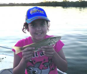 Junior anglers (under 16) won't miss out either with prizes for first and second for each target species.