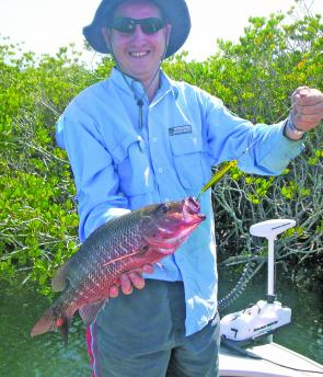 Mangrove jack are the prime target in the creeks and downsizing lures will cut down on the number of accidental barra captures.