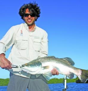Next month will see the barra back on the cards and fish like this one will be high on the target list.