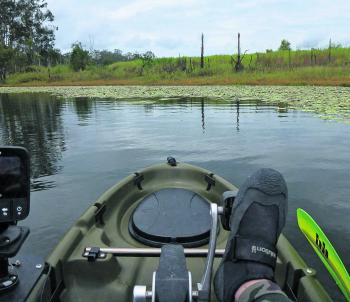 Picking pockets in the lilies with spinnerbaits and Jig Spinner rigged plastics.