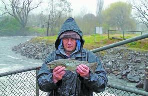 Craig Masterson with a nice brown trout, again from the floodwaters.