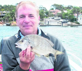 Frank Muscat with a small bream caught while bait fishing in the Port Hacking.