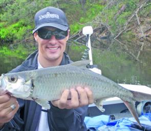 Daiwa's Peter Lenard with his first north coast tarpon (ox eye herring) – a welcomed mangrove jack by-catch.