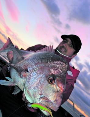 "Snapper like this one caught by Simon MacCormack are still around if you are willing to put in the effort. This fish was taken on a ZMan 5"" Streakz in electric chicken."