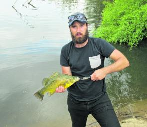 Brendan Hawes with a small golden perch, which needed a few redfin to start feeding before taking the bait.