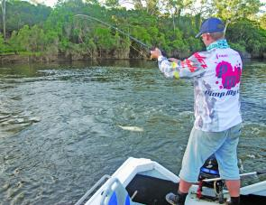 The Boyne River has been inadvertently stocked with thousands of big barra that are accessible to every angler. Steve Morgan puts some finishing touches to another metre-plus fish.