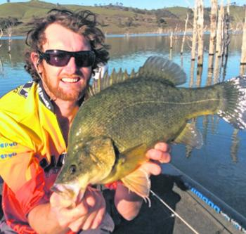 Fishing around timber is a popular way of finding quality yellowbelly.