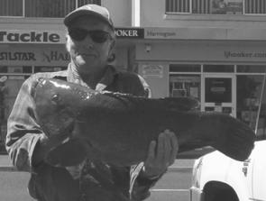 John Brewer with a 9kg blue groper caught on a crab at Crowdy Head.