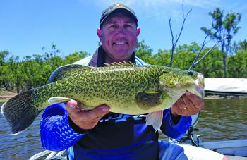 Adam Krautz has been whacking the Coolmunda cod by fishing big spinnerbaits to the timbered areas.