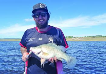 Sam Pisani caught this golden perch at Leslie Dam trolling near the Black Boys.