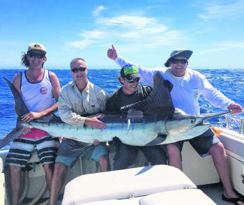 A great autumn marlin taken aboard Topcat Charters!