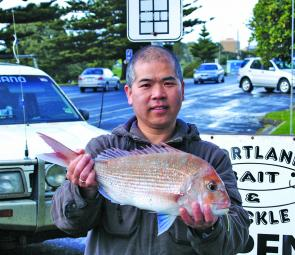 Dave 'the noodle man' with a very nice 1.9kg snapper from the Lee Breakwall.