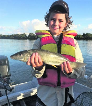 Young gun Rhiley with another huge whiting.