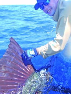 Conor Lynch's sailfish tagged on Ace High.
