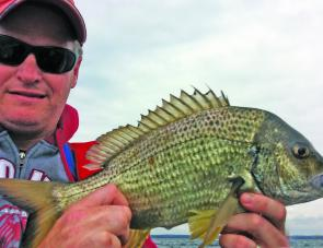Nathan Leicht chose to release this spawning bream from the same JB drummer session.