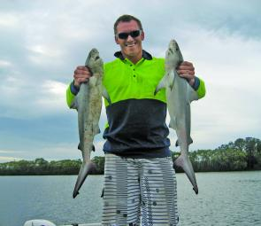 Trent Gasnier, of Ballina, mixed it with a couple of baby bull sharks for sport and barbecue fillets.