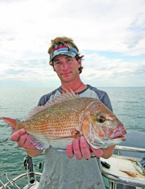 Using a combination of fresh bait and quality terminal tackle use the undoing of this nice size pinkie snapper.