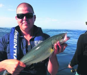 Australian salmon are a feature of the rip – caution is advised here for inexperienced boaters.